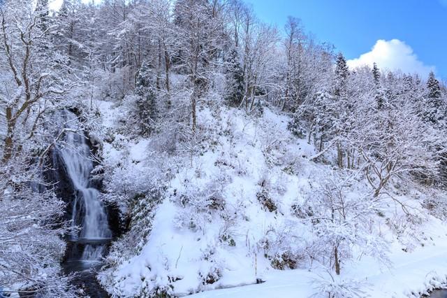 滝百選の秋田小坂町の七滝の写真