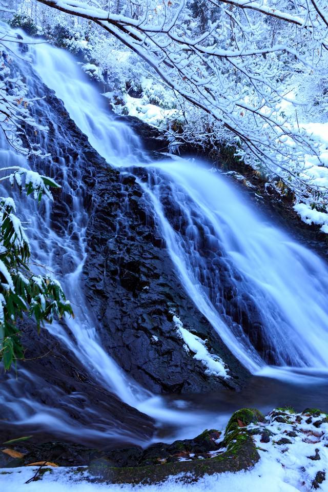 雪中滝の写真