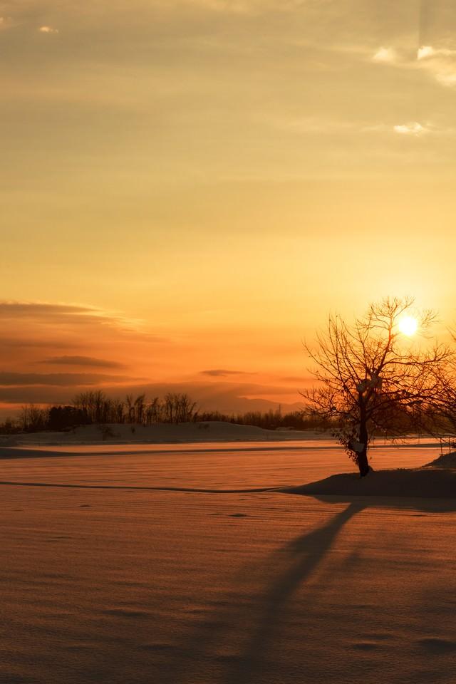 雪国の夕陽の写真