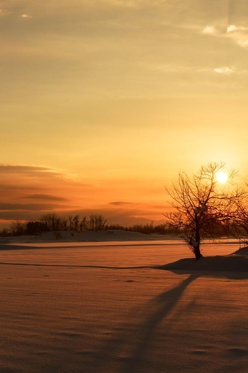 「雪国の夕陽」の写真