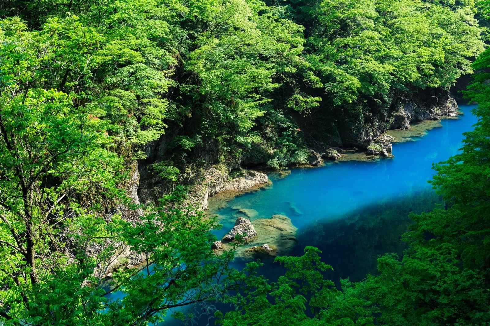 「エメブルな渓谷」の写真