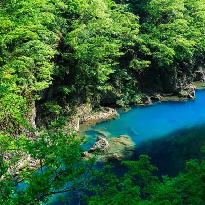 エメブルな渓谷の写真