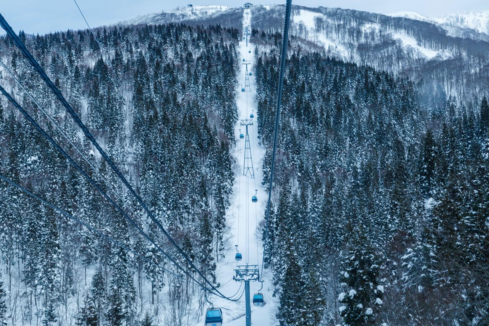 「スキー場のゴンドラの中からスキー場のゴンドラの中から」のフリー写真素材を拡大