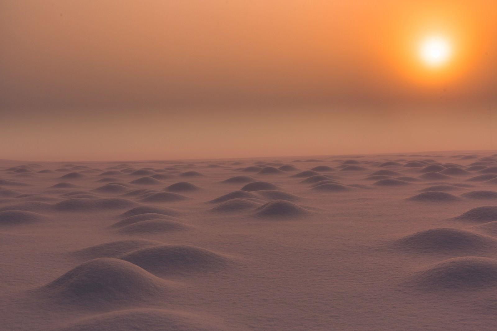 「雪原の朝雪原の朝」のフリー写真素材を拡大