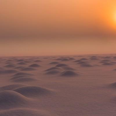 雪原の朝の写真