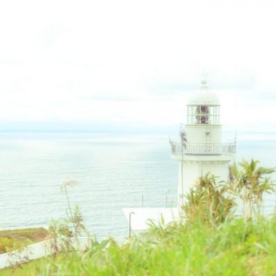 淡色灯台前の写真