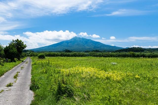 野原の先に岩木山(いわきさん)の写真