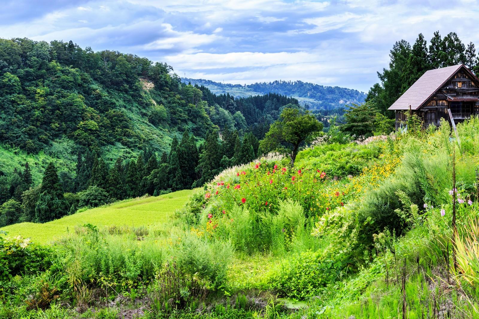 「山に囲まれた小屋 | 写真の無料素材・フリー素材 - ぱくたそ」の写真