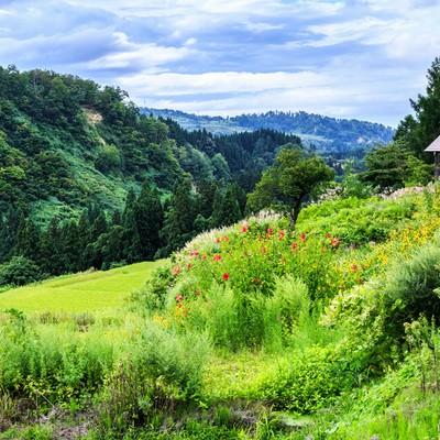「山に囲まれた小屋」の写真素材