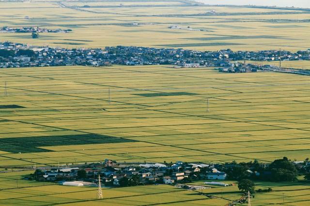 井川町の田園の写真