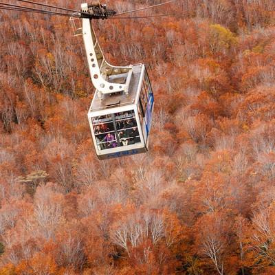 「八甲田山のロープウェイと紅葉」の写真素材