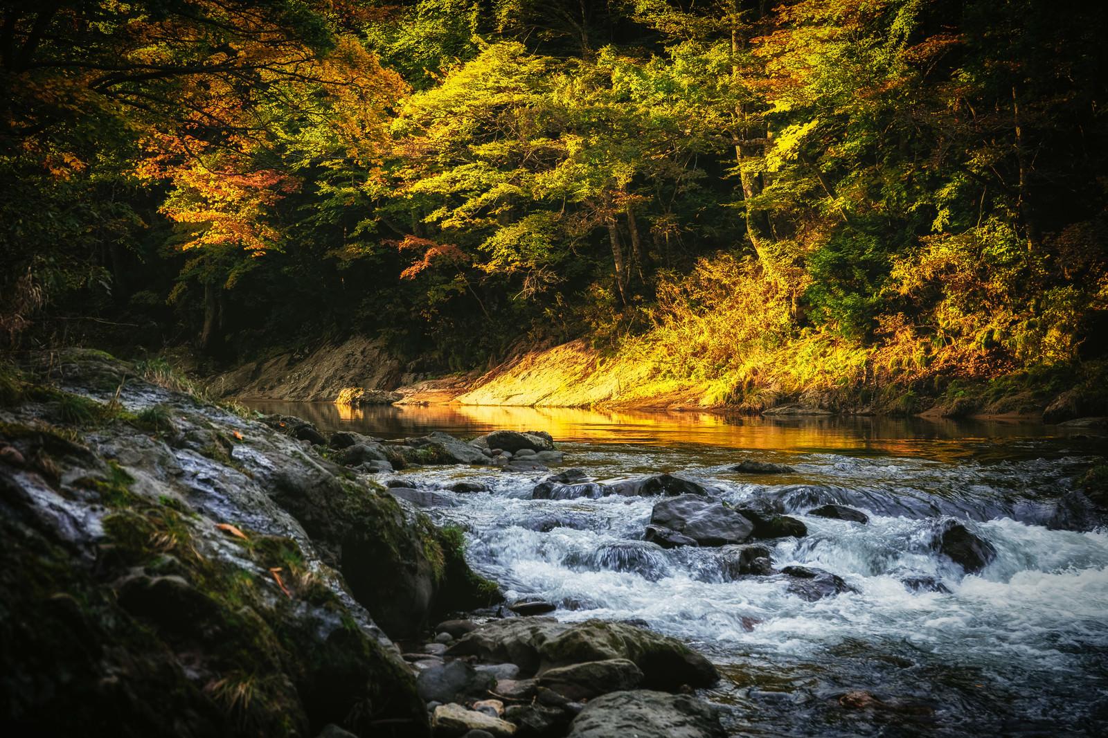 「渓谷の秋の夕暮れ渓谷の秋の夕暮れ」のフリー写真素材を拡大