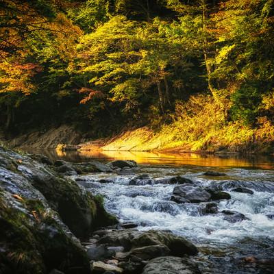 「渓谷の秋の夕暮れ」の写真素材