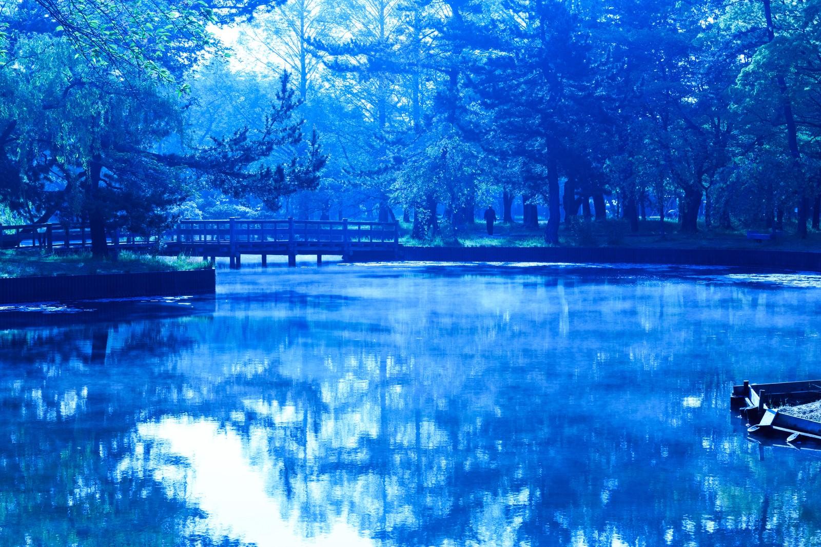 「朝の公園(青)」の写真