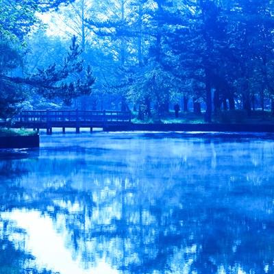朝の公園(青)の写真