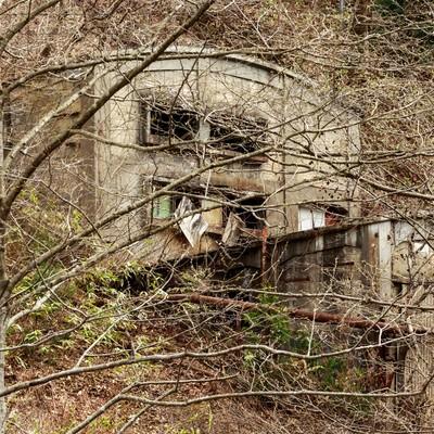 森の中の廃墟(古遠部鉱山)の写真