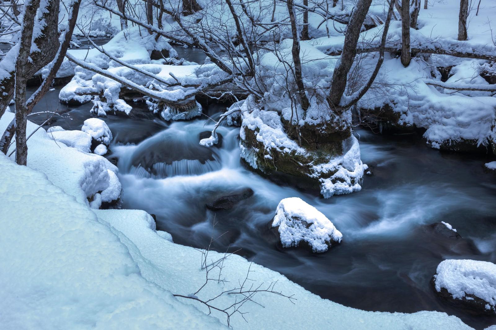 「冬の奥入瀬の流れ」の写真