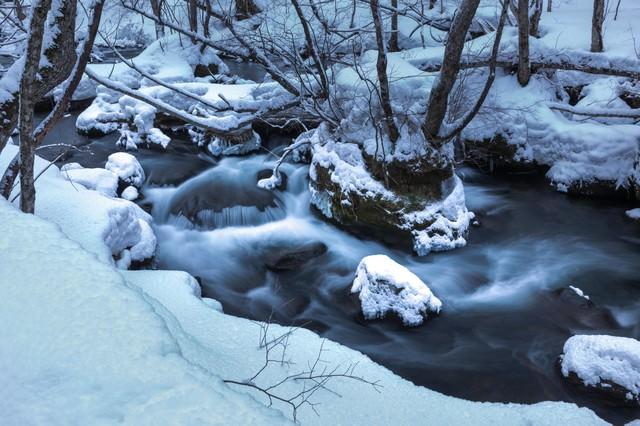 冬の奥入瀬の流れの写真