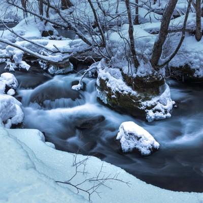 「冬の奥入瀬の流れ」の写真素材