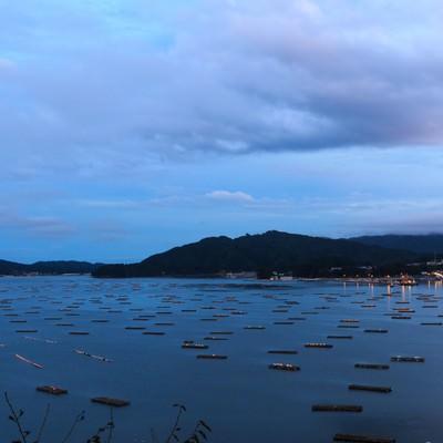 「牡蠣の養殖筏」の写真素材