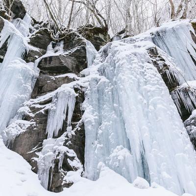 「奥入瀬の氷柱」の写真素材