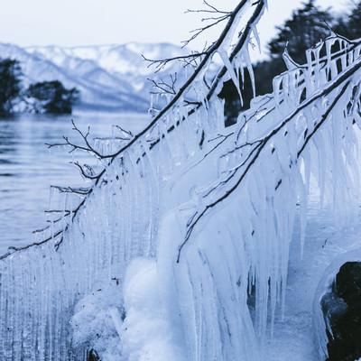 「十和田湖のしぶき氷」の写真素材