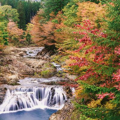 「下北の川内川の紅葉」の写真素材
