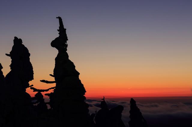 樹氷のシルエット(夕暮れ)の写真
