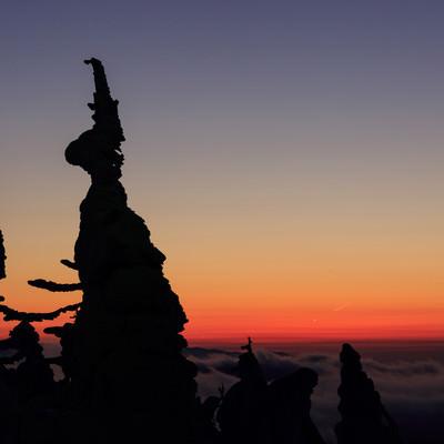 「樹氷のシルエット(夕暮れ)」の写真素材