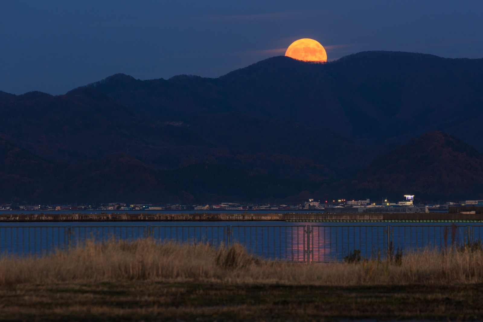 「満月こんにちは」の写真