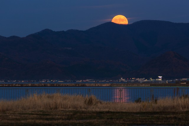 満月こんにちはの写真