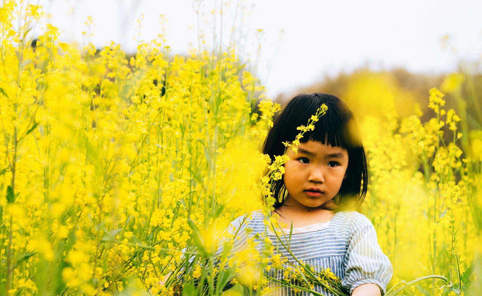 「菜の花畑と女の子」の写真[モデル:あんじゅ]