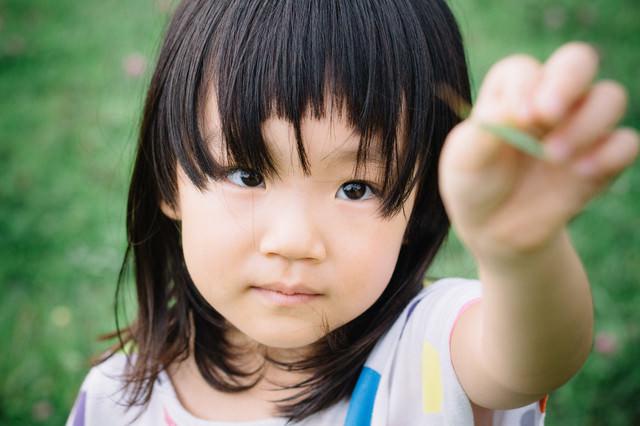 公園でバッタを見つけた少女の写真