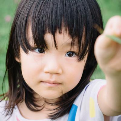 「公園でバッタを見つけた少女」の写真素材
