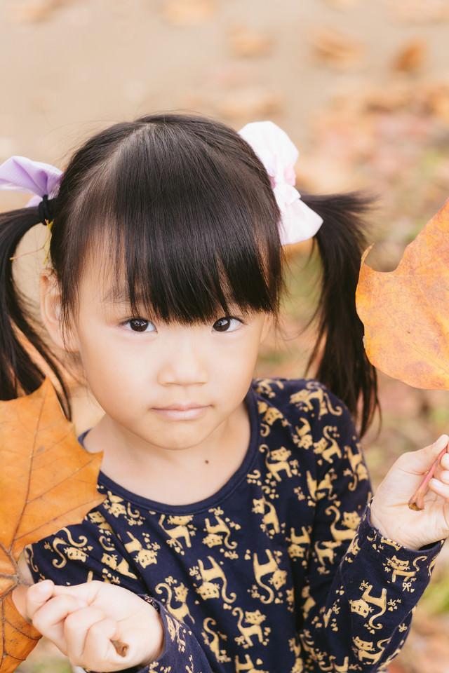 落葉とツインテの女の子の写真