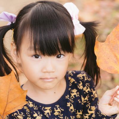 「落葉とツインテの女の子」の写真素材