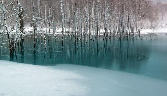 青い池と雪の写真