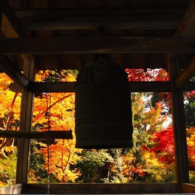 お寺の鐘(シルエット)の写真