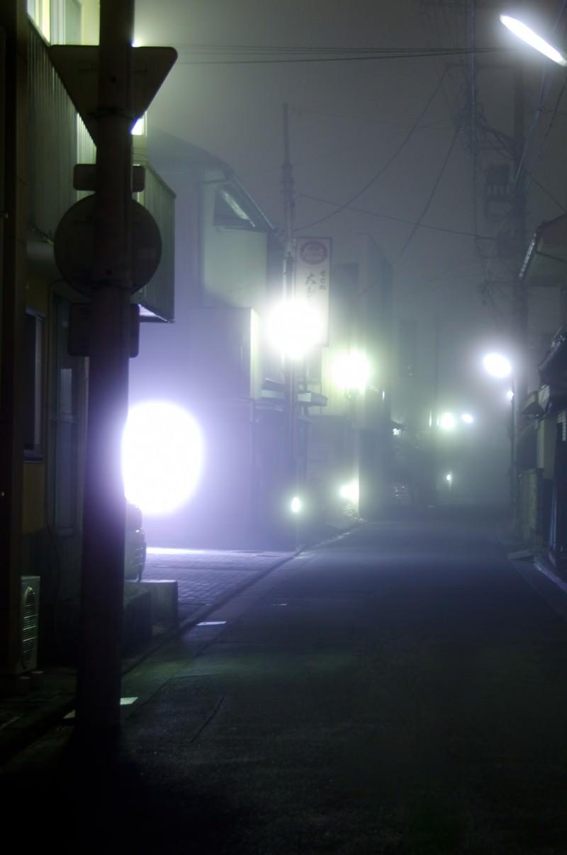 「霧が出た夜道」の写真