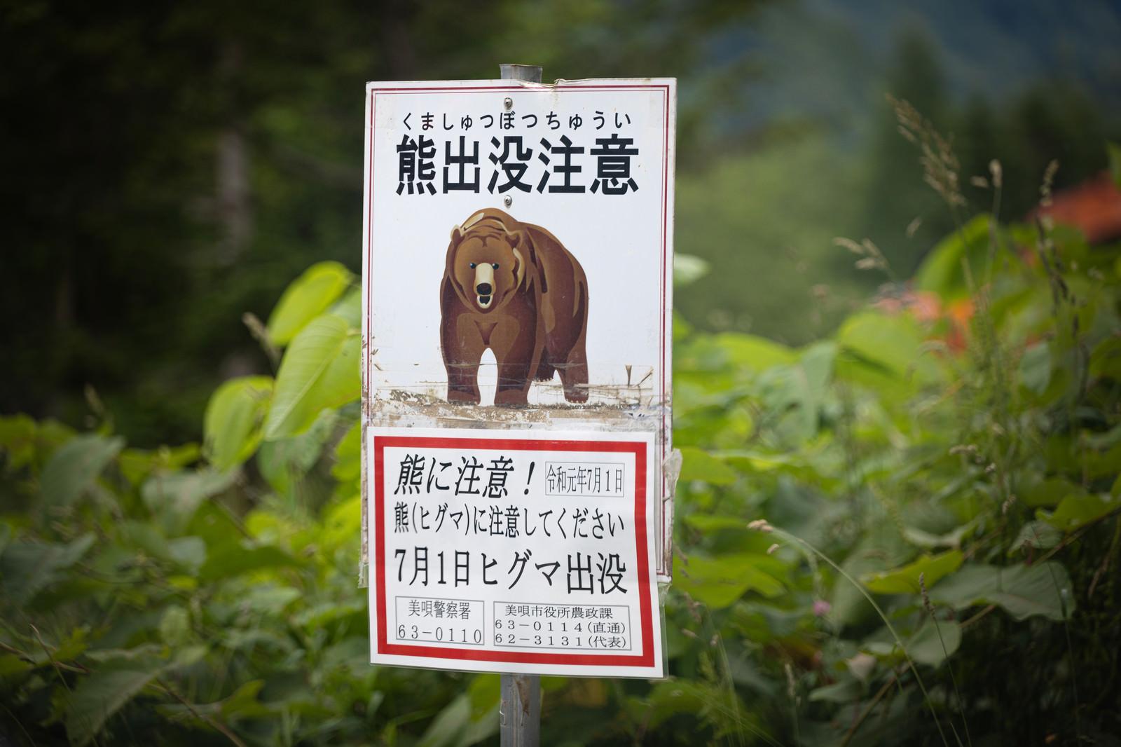 「熊出没注意の看板(ヒグマ)」の写真