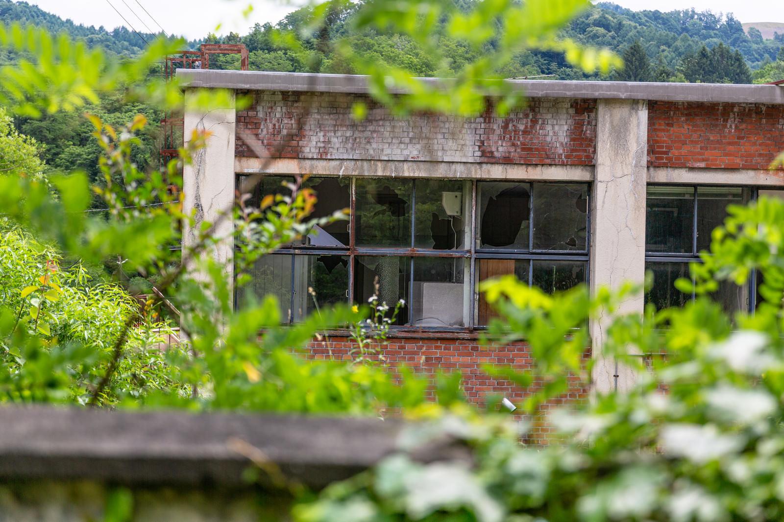 「窓ガラスが割れた古い建物」の写真