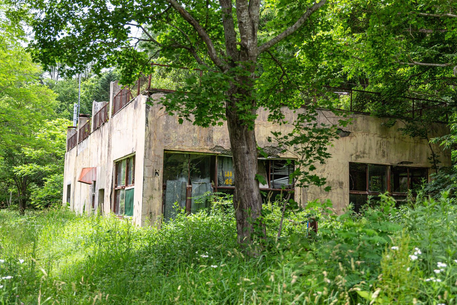 「草が生い茂る中、佇む建物」の写真