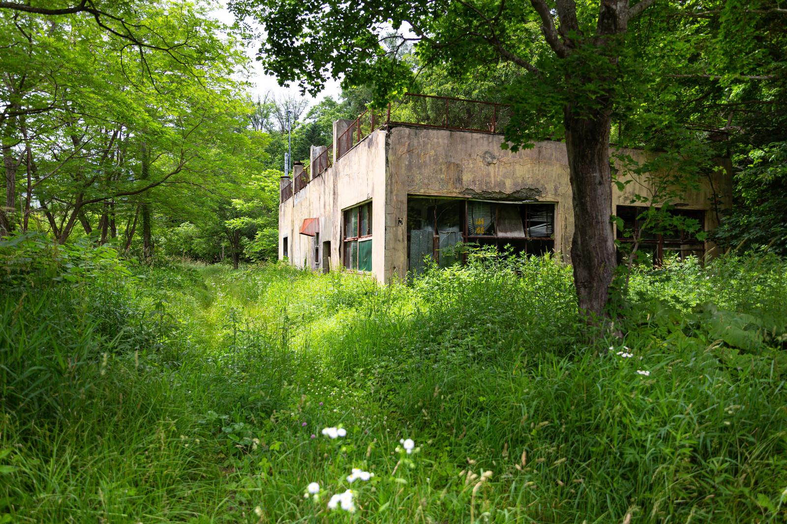 「草木が生い茂る閉鎖中の我路郵便局」の写真