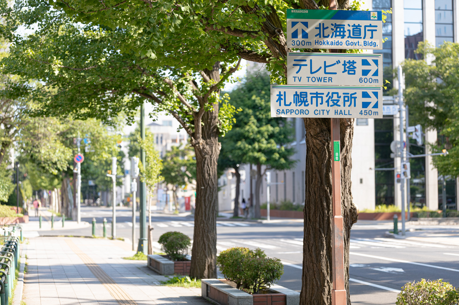 「大通公園付近の歩道に設置してある指導標識」の写真