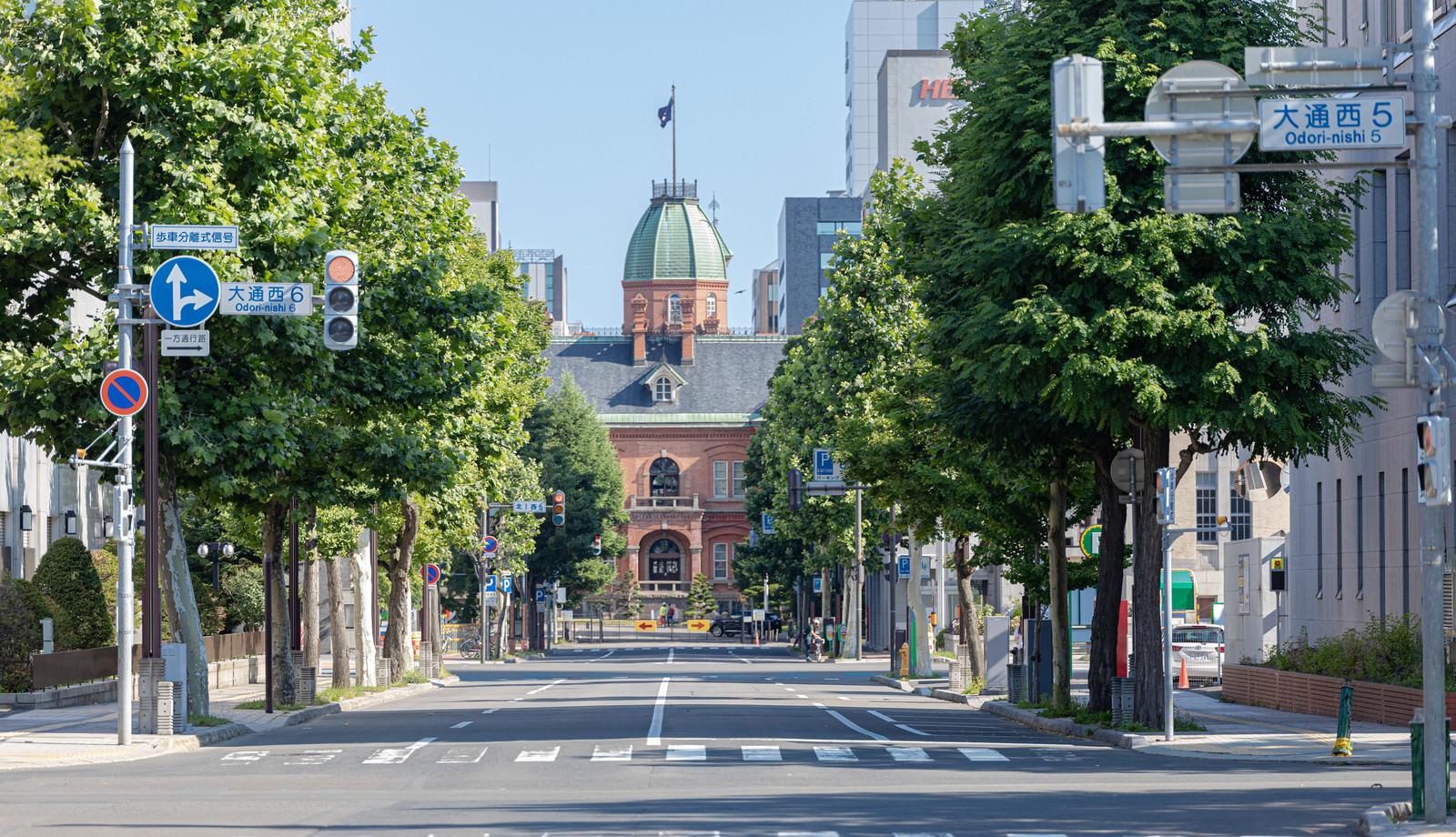 「通りの向こうに見える北海道庁旧本庁舎(赤レンガ庁舎)」の写真