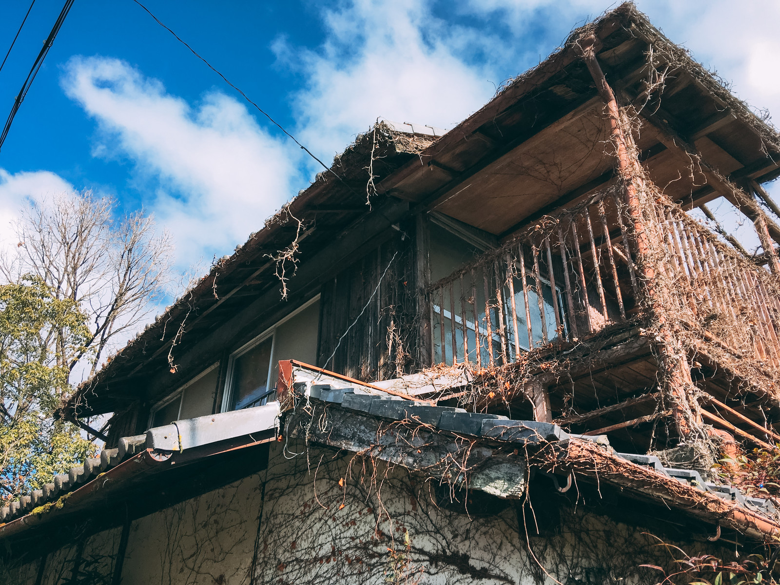 「人に忘れられて朽ちていく廃屋」の写真