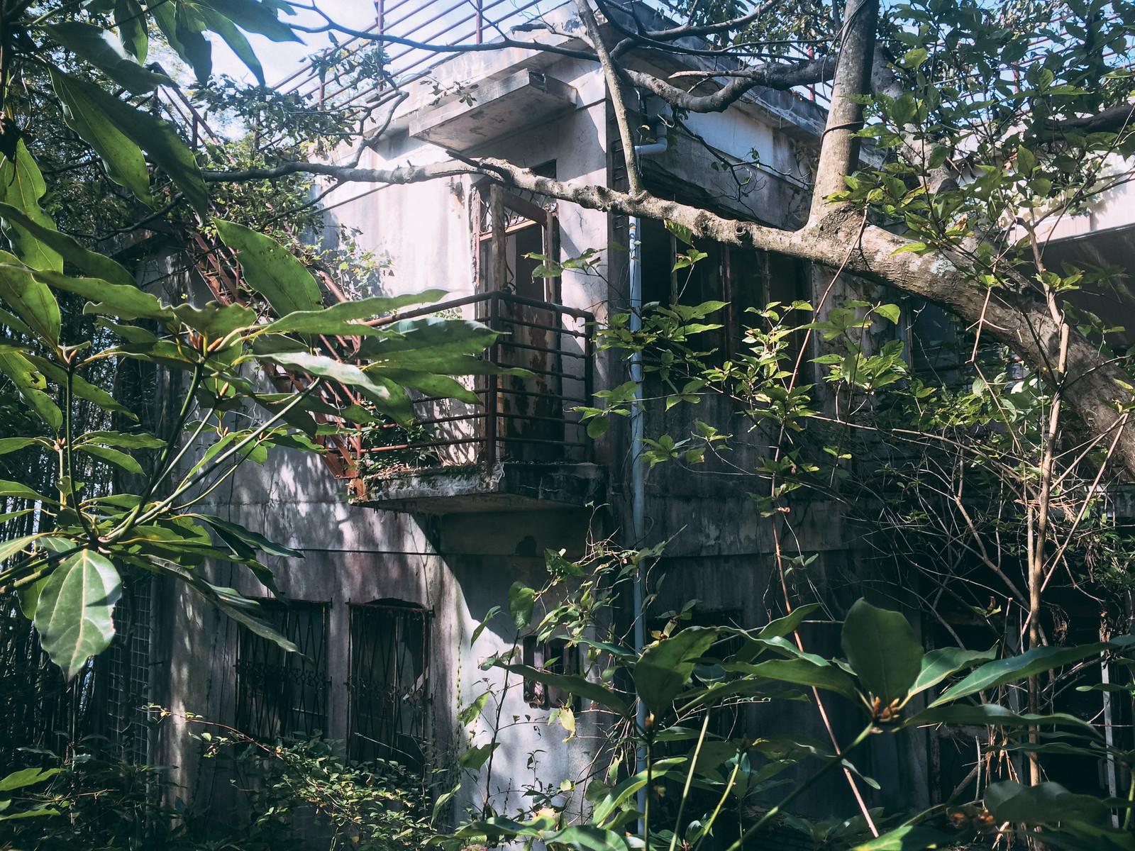 「森の中に佇む人の気配がない施設」の写真