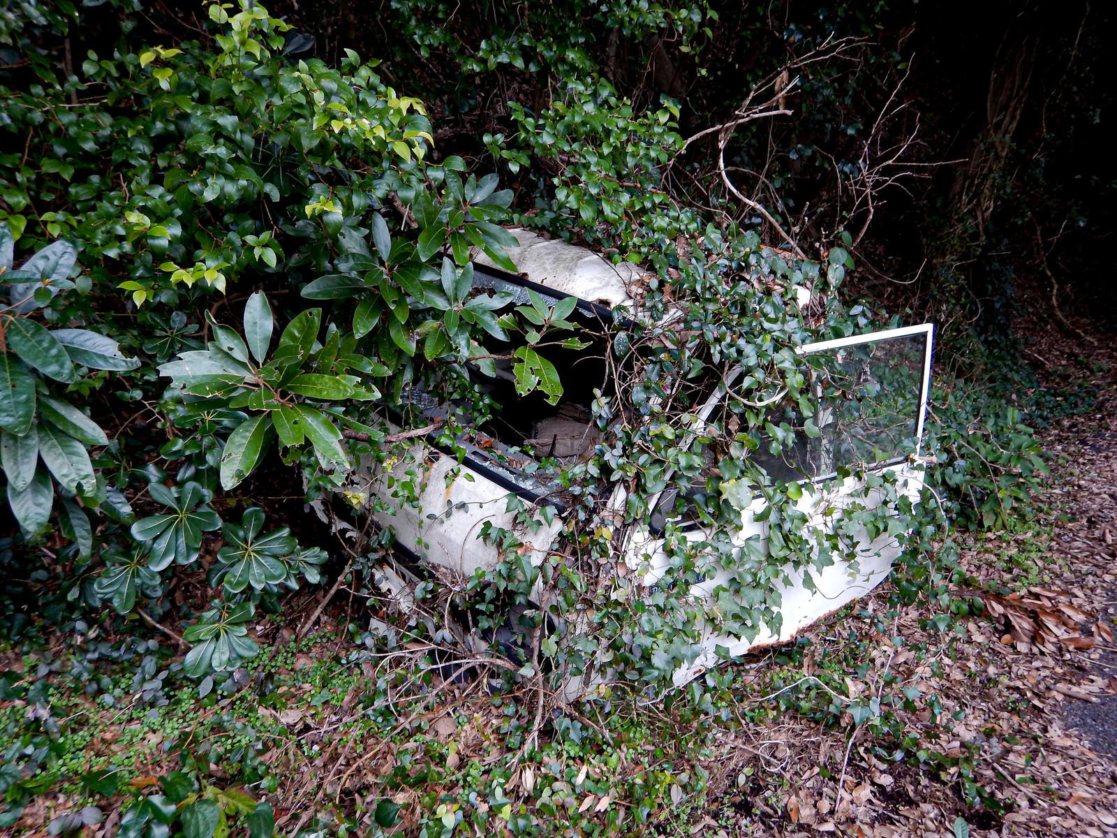 「乗り捨てられたまま放置された廃車」の写真