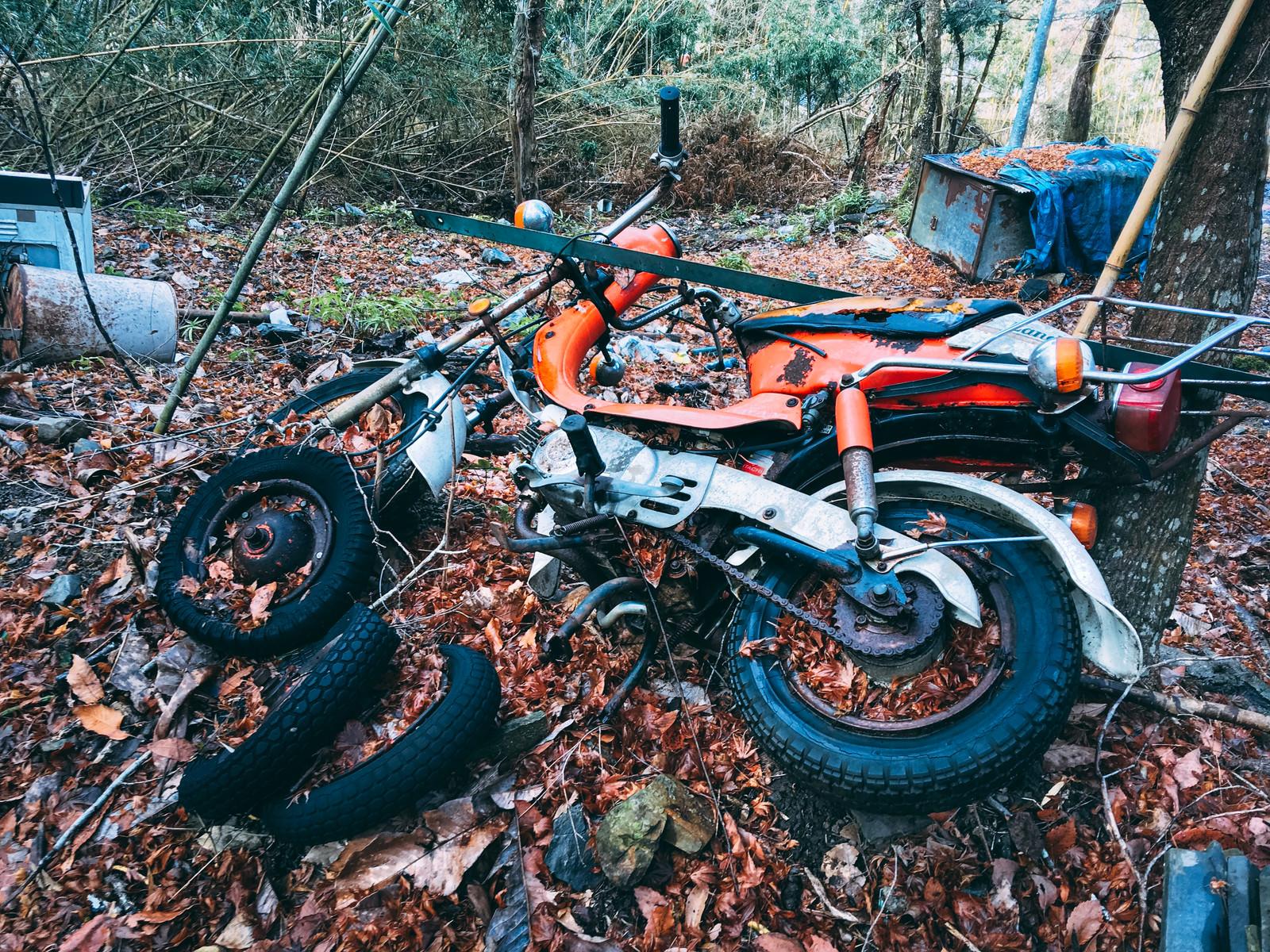 「廃棄され錆付き落ち葉に埋もれかけたバイク」の写真