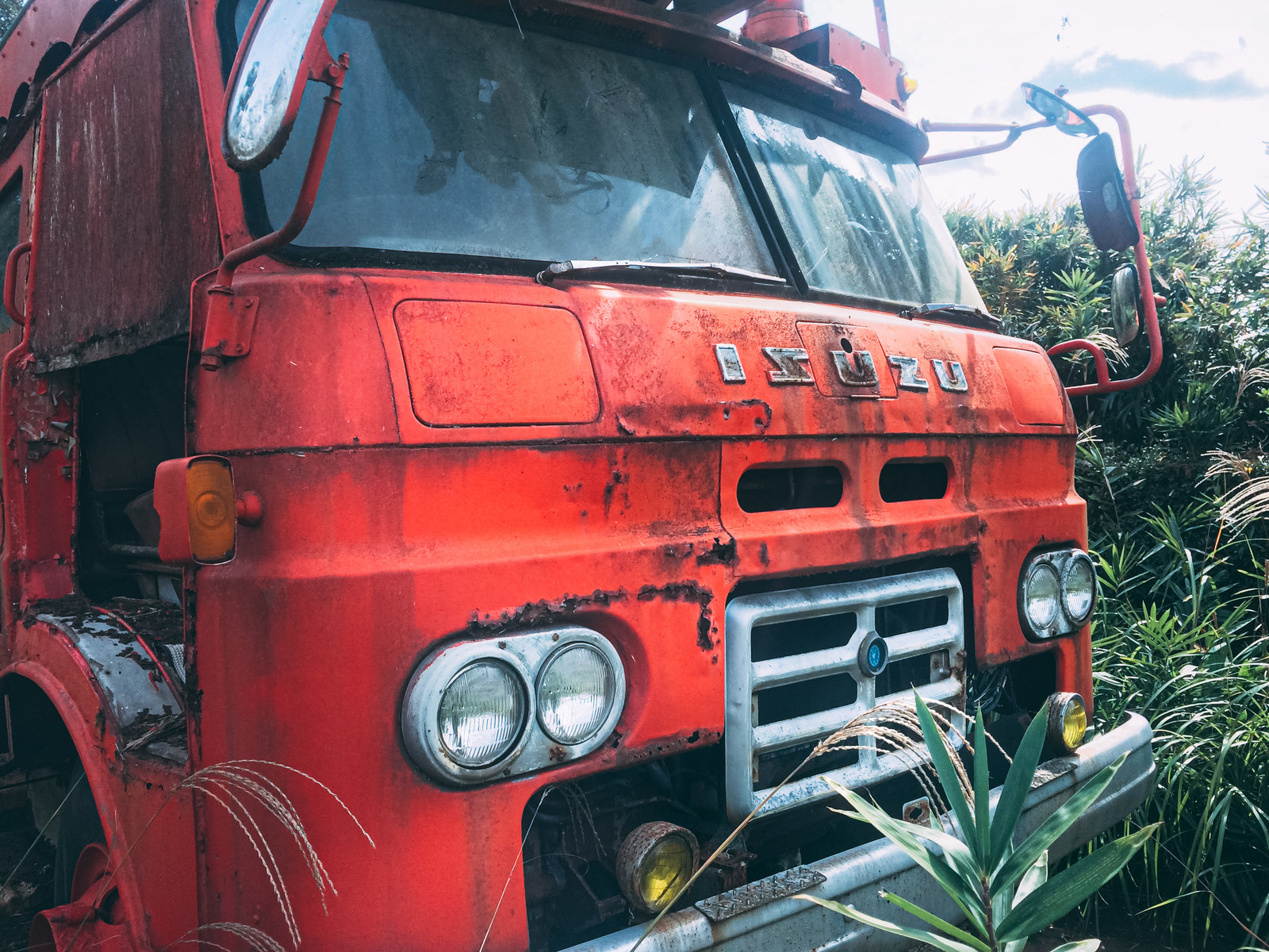 「生い茂る雑草の中に佇む廃トラック」の写真